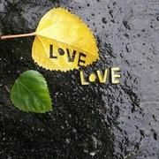 LOVE LOVE on My World.