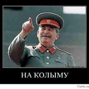 Егор Кожемяка on My World.
