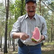Николай Кулабухов on My World.