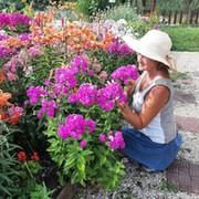 Светлана Пальцева on My World.